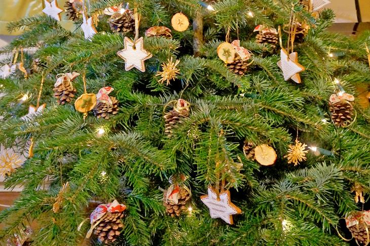 Nachhaltiger christbaum wir leben nachhaltig - Christbaum alternative ...