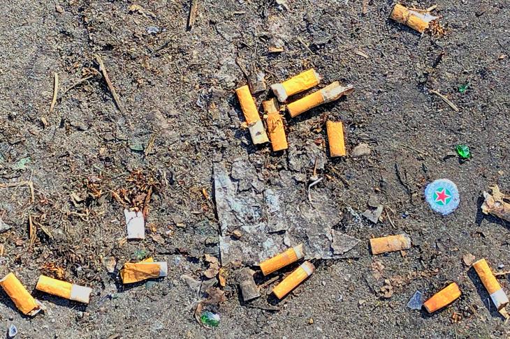 Foto: Weggeworfene Zigarettenstummeln, © R. Burger